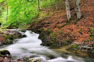 Каньонът на водопадите, гр. Смолян